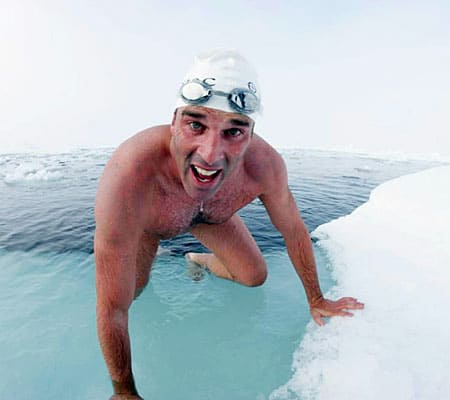 PolarSwimmer_450x400